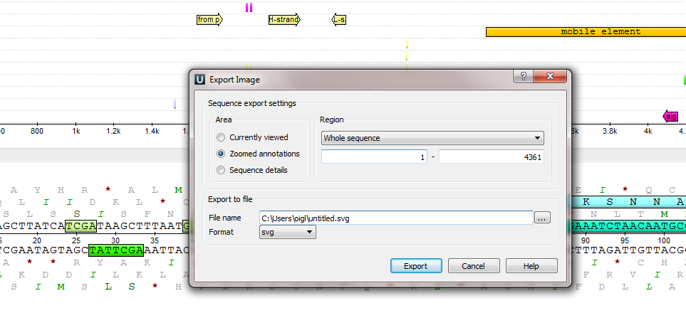 export_image.png